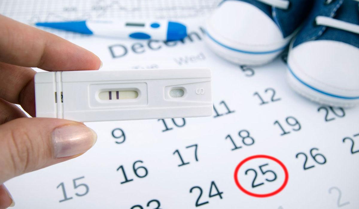 بالصور كيف اعرف ايام التبويض , كيفية حساب افضل ايام الحمل 1432 1