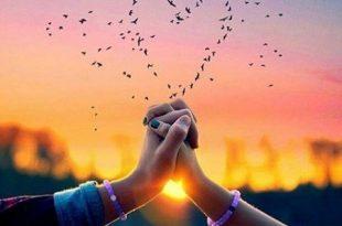 بالصور رسائل حب صباحية , اجمل صور للحب 2019 2917 11 310x205