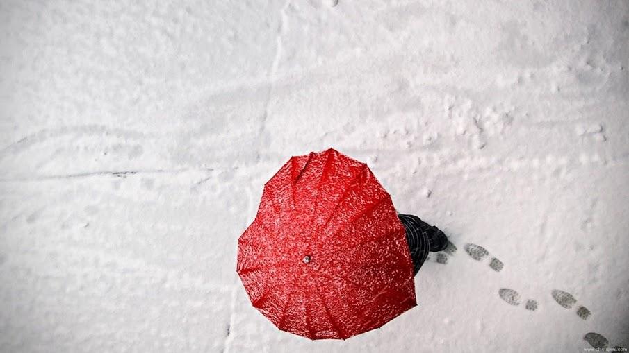 بالصور صور جميلة للواتس , اجمل صور واتس 3589 12