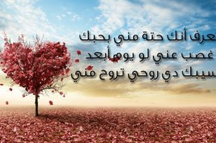 بالصور رسائل حب وغرام , صور لرسائل للحب 3606 12 310x205
