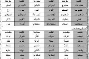 صور معاني الكلمات عربي عربي , تعريف الكلمات العربيه بالعربيه