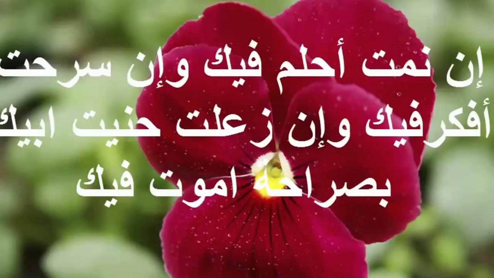 بالصور رسائل غرام , صور لرسائل غرام 3774 11