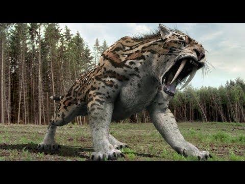 بالصور اكبر حيوان في العالم , تعرف على اكبر حيوان بالعالم 3829 5