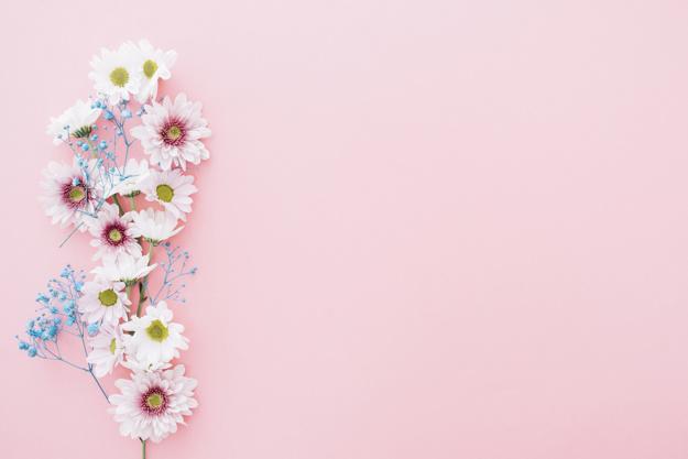 صور خلفيات وردية , صور جميلة لخلفيات ورديه
