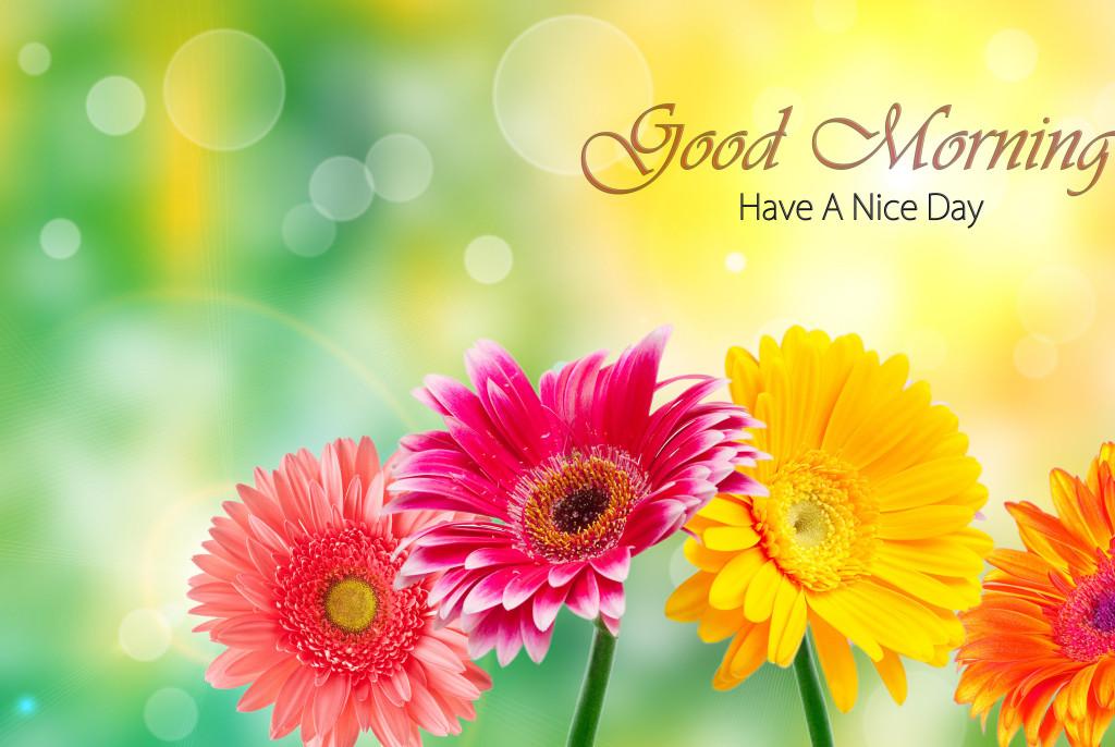 بالصور اجمل الصور المتحركة صباح الخير , صور جميلة متحركة لصباح الخير 3882 4