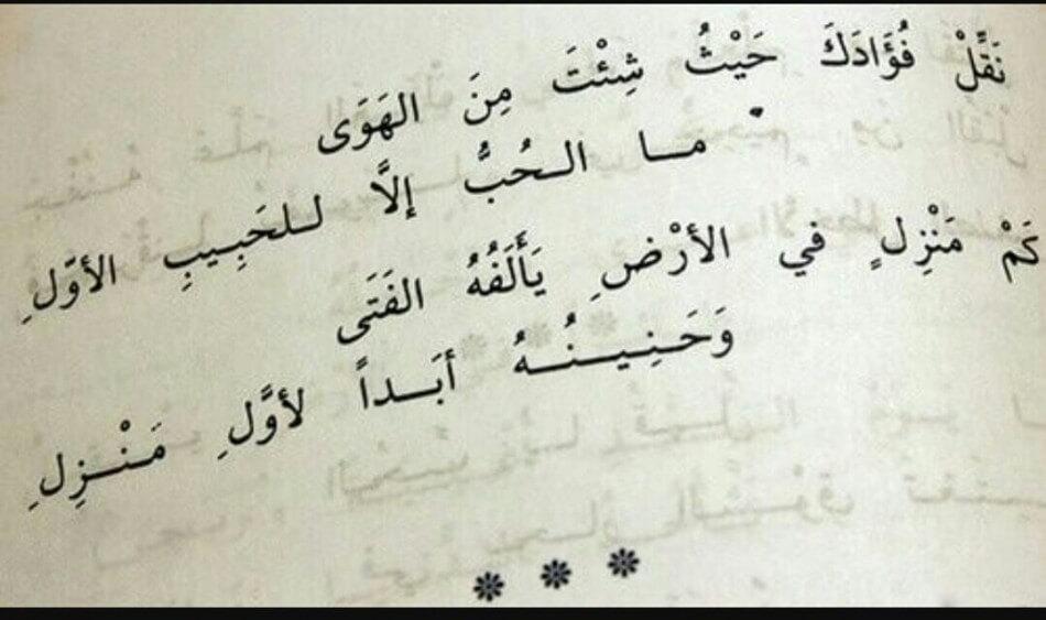بالصور قصيدة حب للحبيب , صور لقصيدة حب للحبيب 3902 7