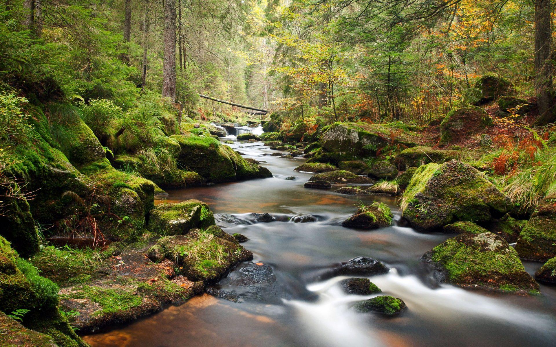 بالصور روعة الصور , صور مناظر طبيعية جميلة 4166 1