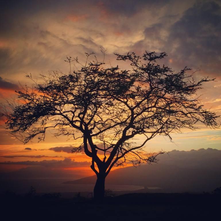 بالصور روعة الصور , صور مناظر طبيعية جميلة 4166 10