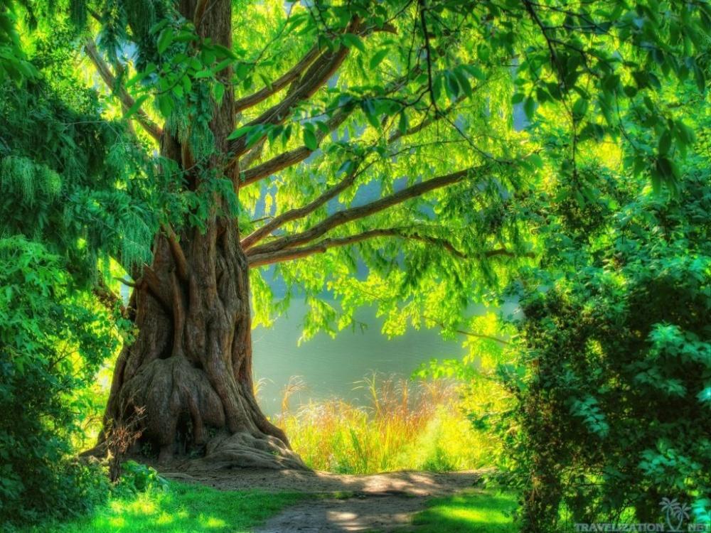 صور روعة الصور , صور مناظر طبيعية جميلة