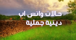بالصور حالات واتس اب حلوه وروعه , حالات اسلامية للواتس اب 4286 1 310x165