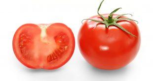 بالصور فوائد الطماطم , تعرفي علي اهم فوائد ثمرة الطماطم 4290 3 310x165