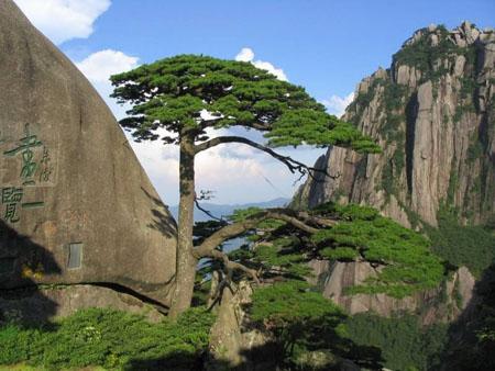 بالصور صور مناظر جميله , اجمل صور جبلية ساحرة 4299 16
