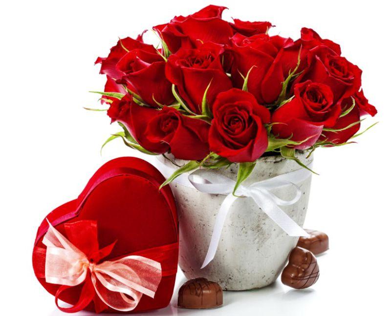 بالصور باقات ورود , الورد لغه الحب والجمال 4300 2