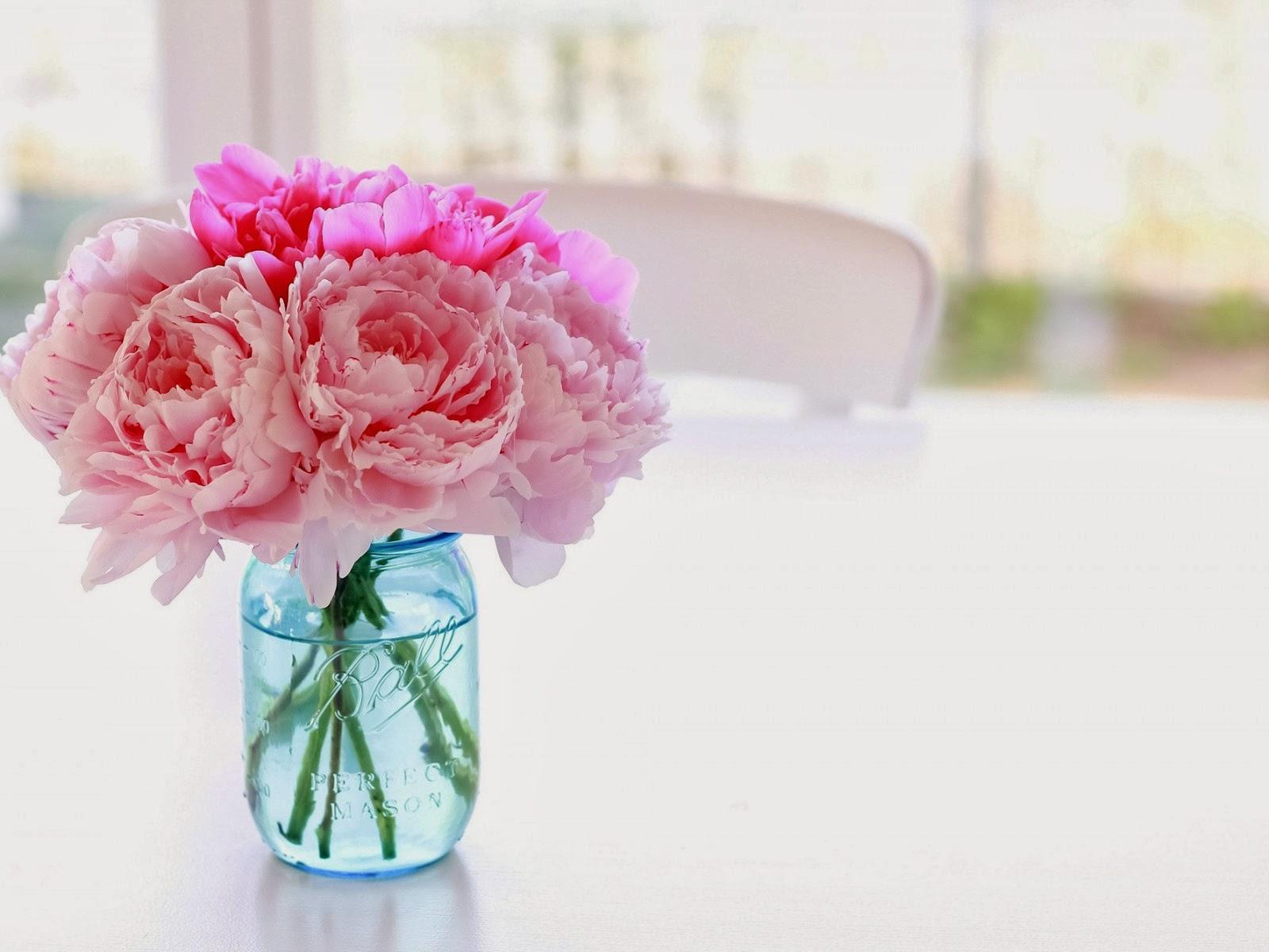 بالصور صور خلفيات ورد , اجمل الخلفيات الوردية الرائعه 4303 4