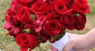 بالصور صور ورد جميل , اجمل صور لبوكيه الورد 4327 11 310x165