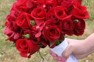 صورة صور ورد جميل , اجمل صور لبوكيه الورد