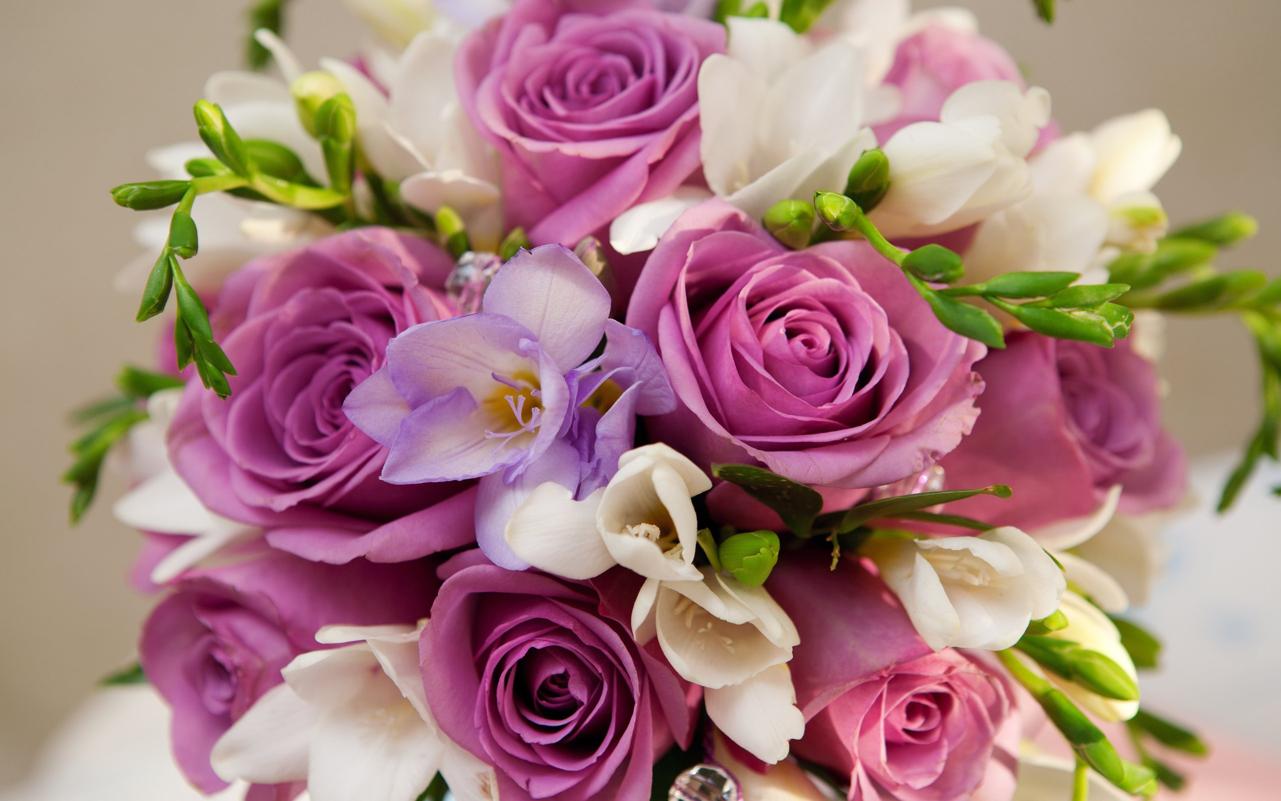 بالصور صور ورد جميل , اجمل صور لبوكيه الورد 4327 6