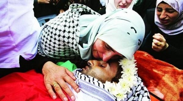 بالصور صور عن الشهداء , صور شهداء فلسطين الحبيبة 4356 2