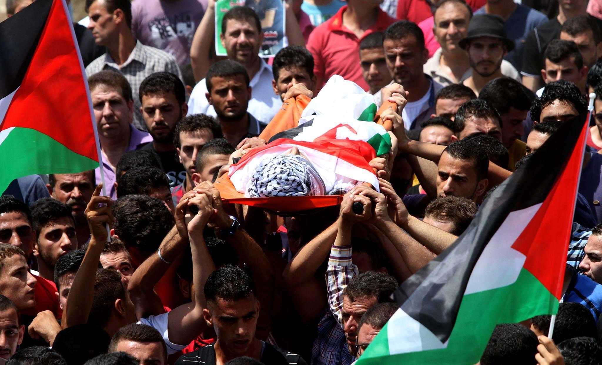 بالصور صور عن الشهداء , صور شهداء فلسطين الحبيبة 4356 4