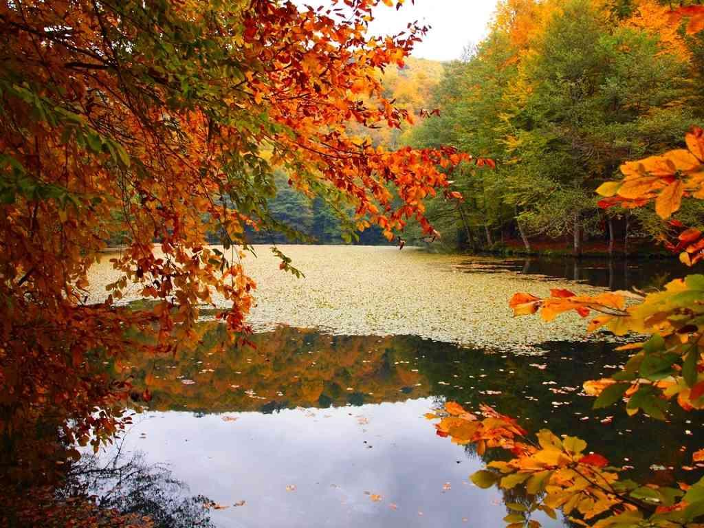 بالصور صور طبيعية , اجمل المناظر والاماكن السياحية الطبيعية 4406 10