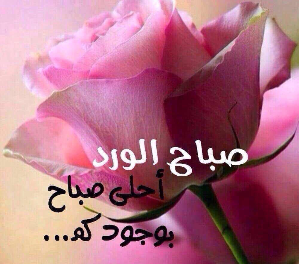 بالصور صور صباح الخير حبيبي , اجمل صباح رومانسي 4421 8