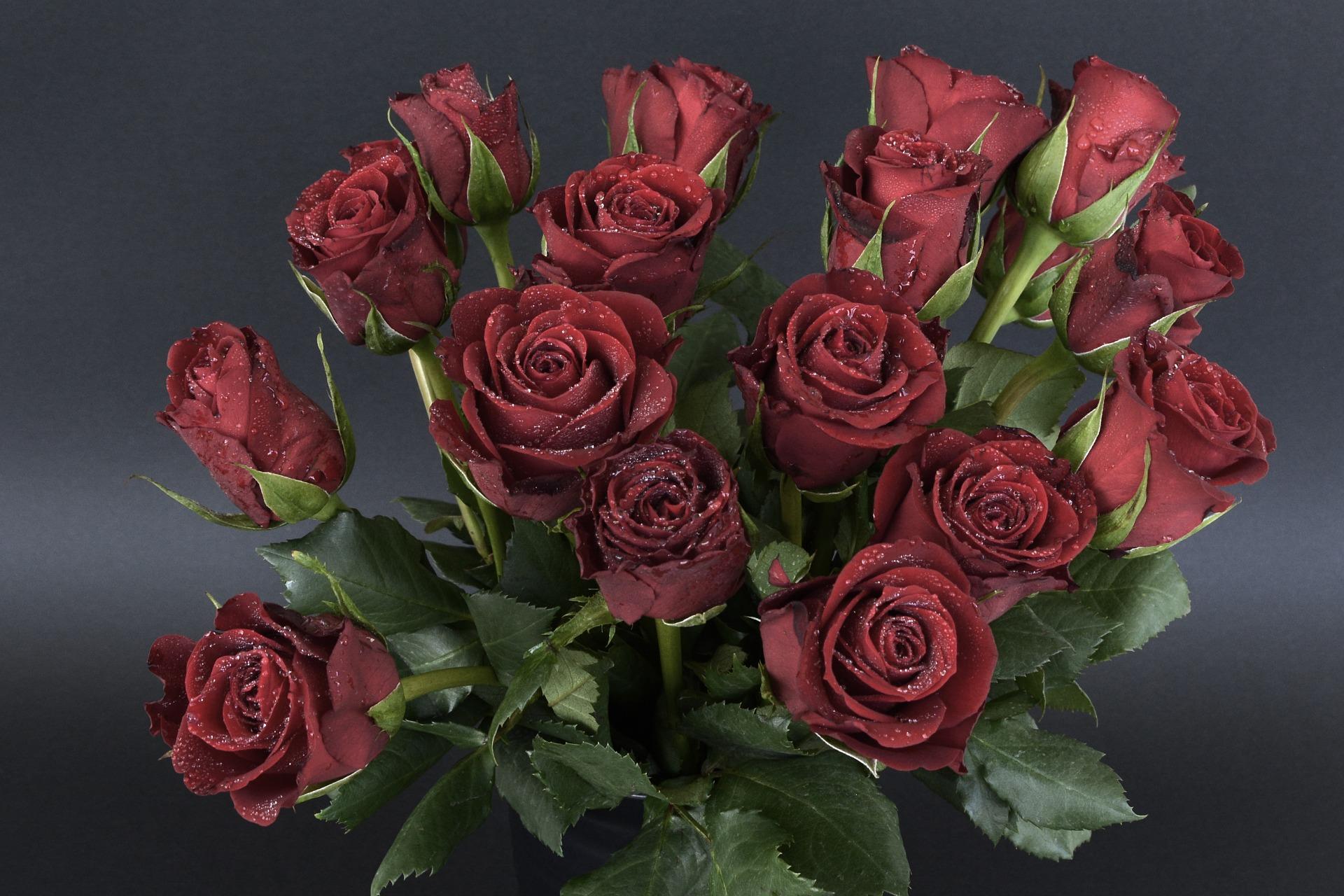 بالصور بوكيه ورد احمر , اجمل صور لبوكيهات الورد باللون الاحمر 4431 10