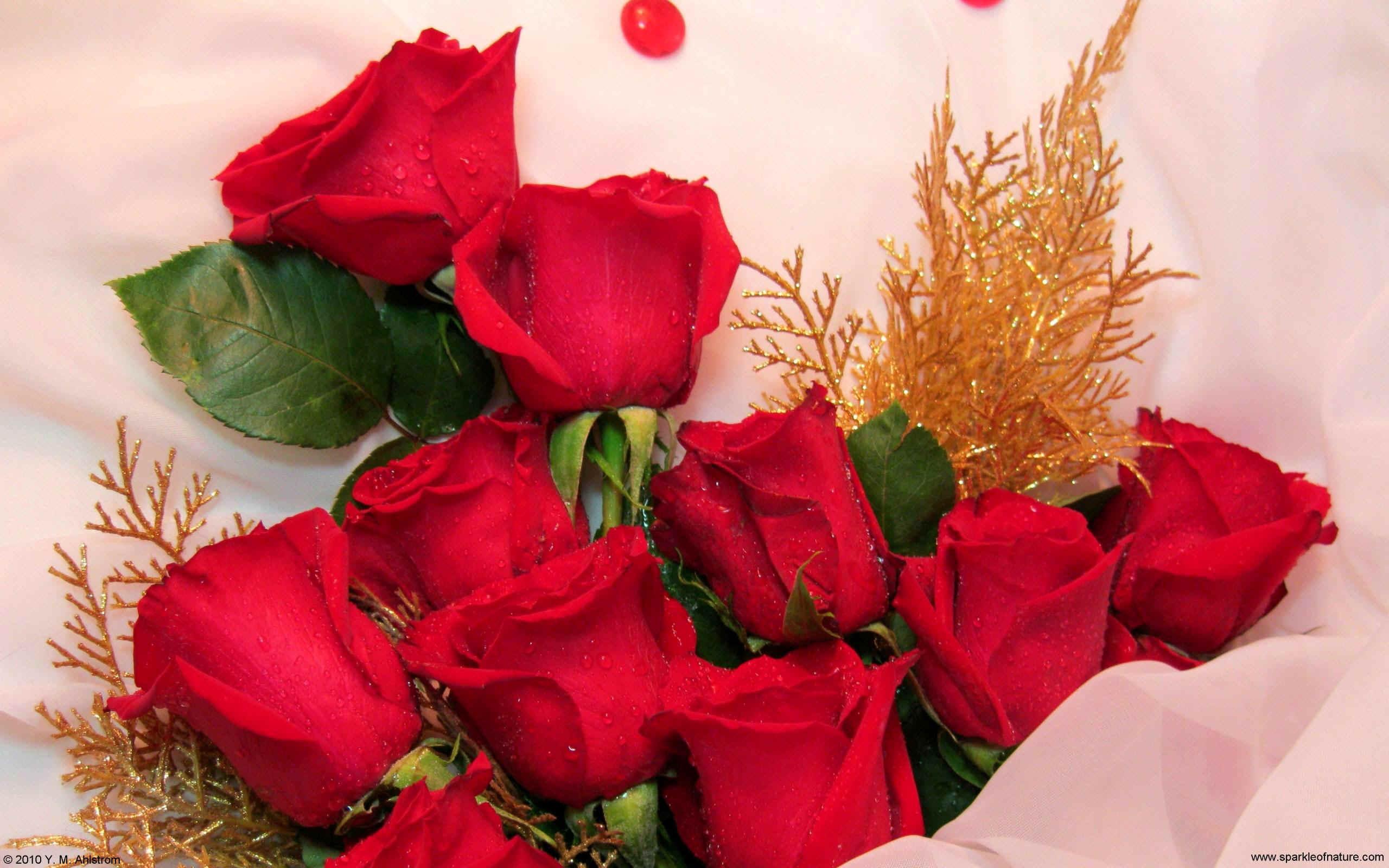 بالصور بوكيه ورد احمر , اجمل صور لبوكيهات الورد باللون الاحمر 4431 11