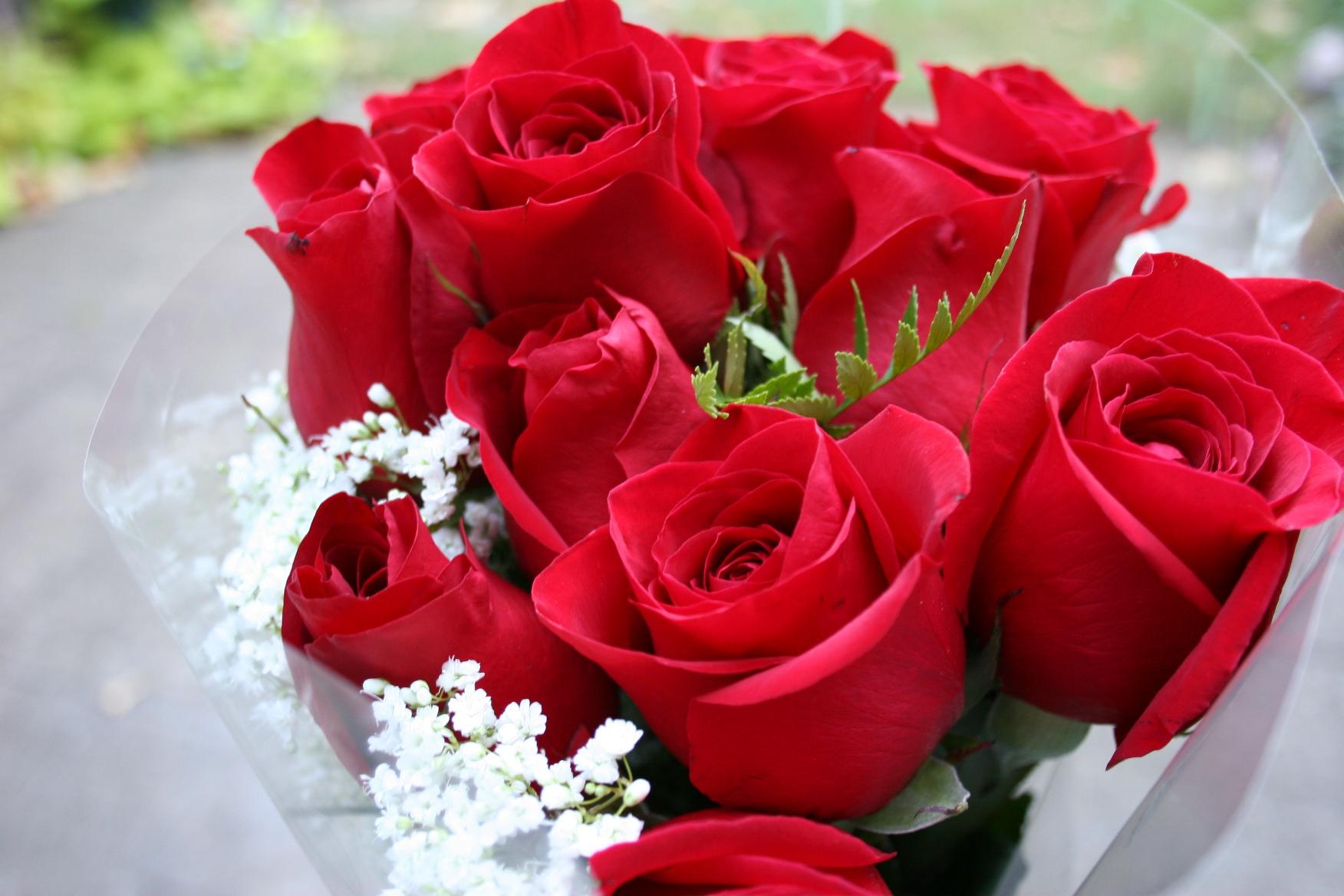 بالصور بوكيه ورد احمر , اجمل صور لبوكيهات الورد باللون الاحمر 4431 3