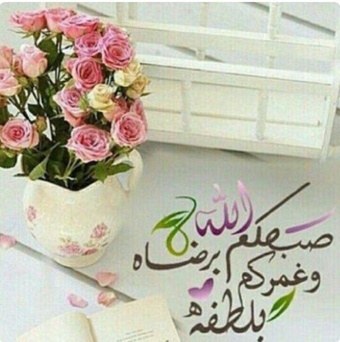 بالصور صباح الجمال , اجمل وافضل الرسائل الصباحية 4448 2