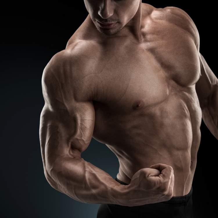 بالصور ماذا تحب المراة في جسم الرجل , صور رجال عضلات 4460 4