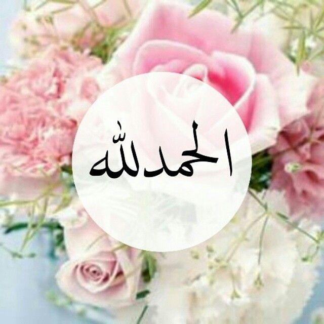 بالصور دعاء الحمد لله , دعاء الحمد بصوت الشيخ ادريس ابكر 458