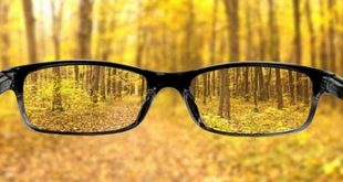 بالصور علاج ضعف النظر , افضل الطرق العلاجية للنظر الضعيف 462 3 310x165