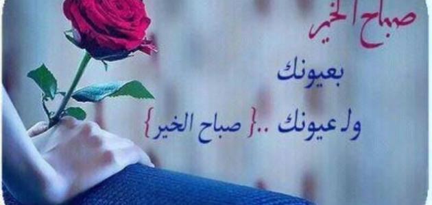 صورة كلمات الصباح للحبيب , امل كلمات رومانسيه في الصباح للحبيب