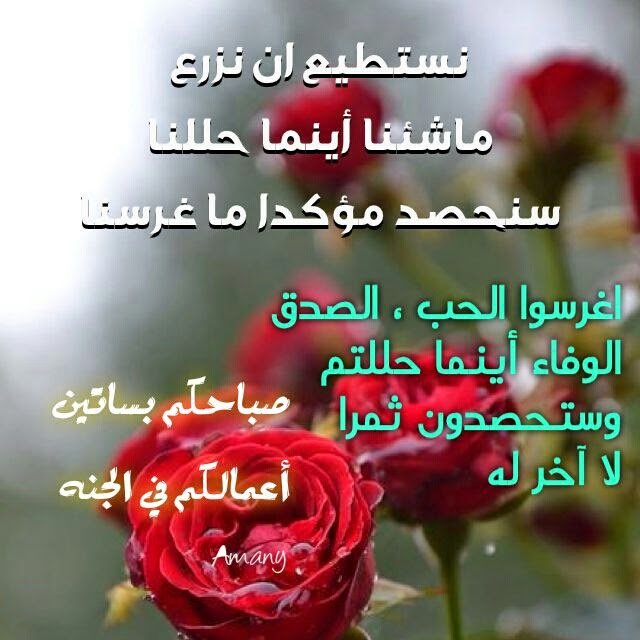 بالصور كلمات الصباح للحبيب , امل كلمات رومانسيه في الصباح للحبيب 5976 10