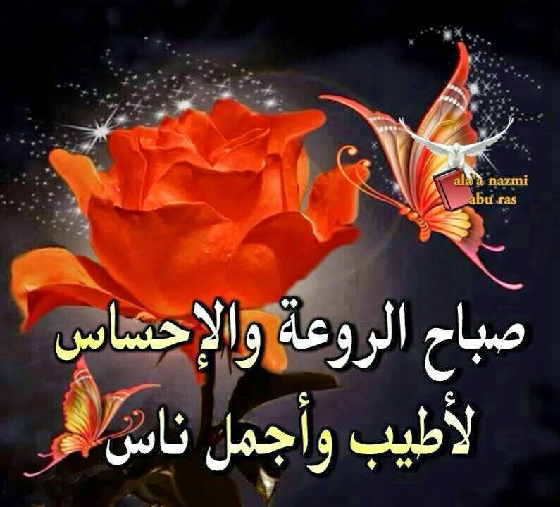 بالصور كلمات الصباح للحبيب , امل كلمات رومانسيه في الصباح للحبيب 5976 11