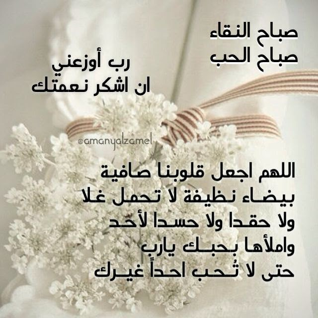 بالصور كلمات الصباح للحبيب , امل كلمات رومانسيه في الصباح للحبيب 5976 12