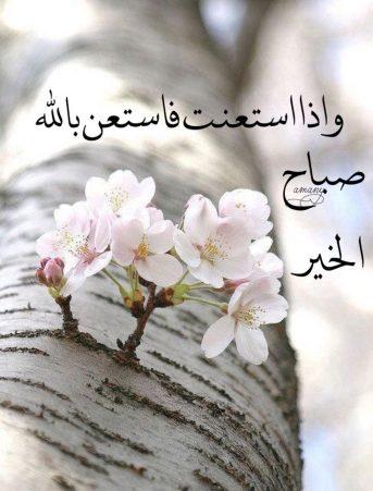 بالصور كلمات الصباح للحبيب , امل كلمات رومانسيه في الصباح للحبيب 5976 5