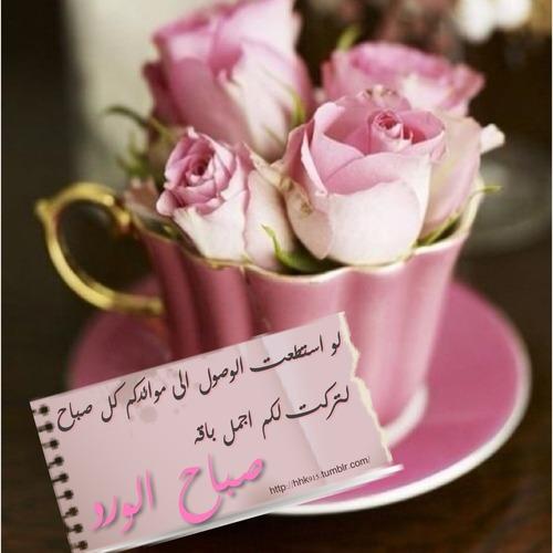 بالصور كلمات الصباح للحبيب , امل كلمات رومانسيه في الصباح للحبيب 5976 7