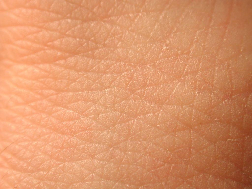 صور بحث عن الجلد , تعرف على فوائد الجد عند الانسان