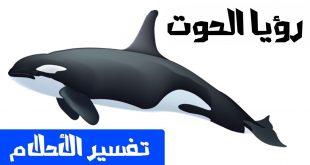 بالصور رؤية الحوت في البحر في المنام 11772 2 310x165
