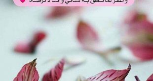 بالصور رسائل اسلامية , مسجات اسلاميه رائعه 6686 12 310x165