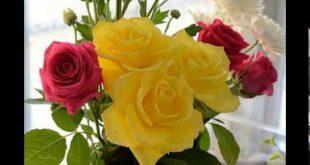 صور احلى الورود الرومانسية , جمال الورود الرومانسيه