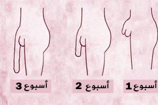 صور افضل طريقة لتطويل الذكر , احسن طريقه لتطويل القضيب الذكري