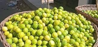 صورة فوائد الليمون مع الماء البارد , الليمون و الماء للتخسيس و خساره الوزن