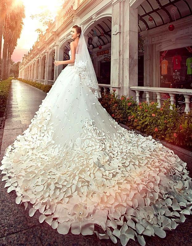 صورة اجمل فستان في العالم , فستان الاحلام