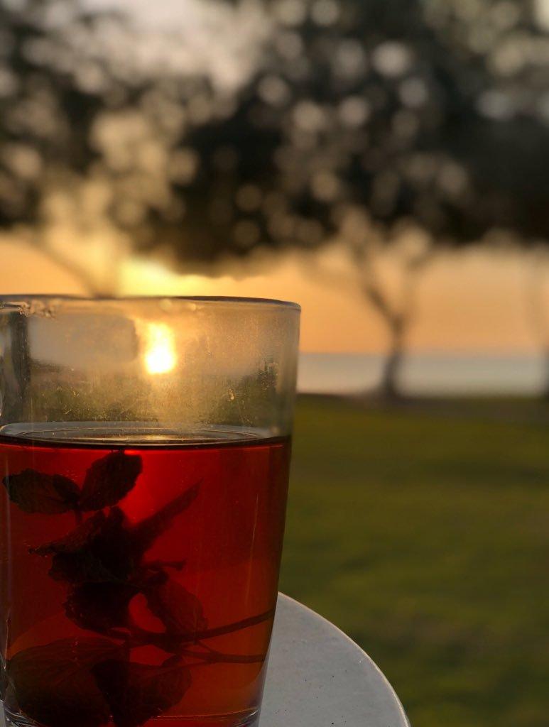 صور صور كوب شاي , صور كوب شاي جميله جدا