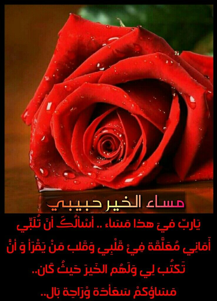 صور مساء الورد حبيبي , اجمل عبارات عن المساء