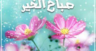 صور حبيبي صباح الخير كلمات , اجمل الاغانى العربية