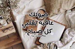 صورة كلمات صباح الخير للحبيب , صباح الورد يا عيونى