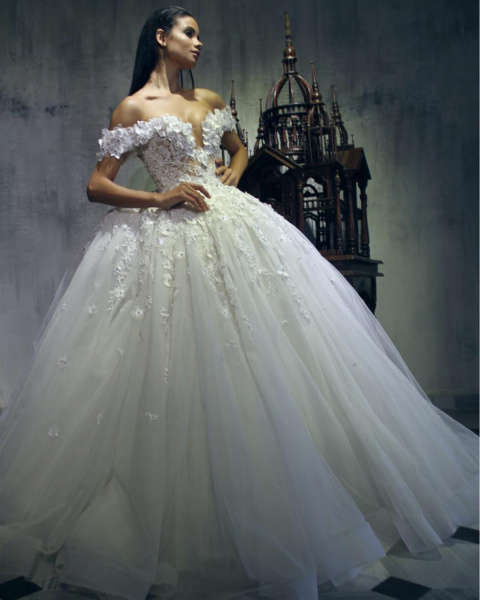 صور صور فساتين العرس , احلي و اروع فساتين اعراس